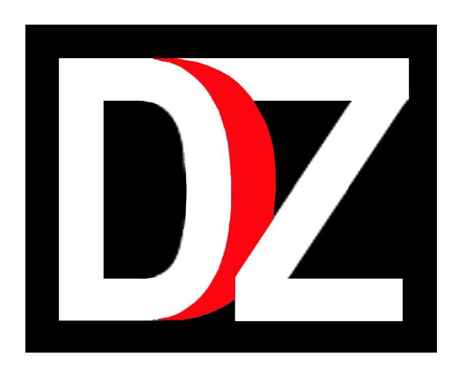 D-Z Consulting UG Logo